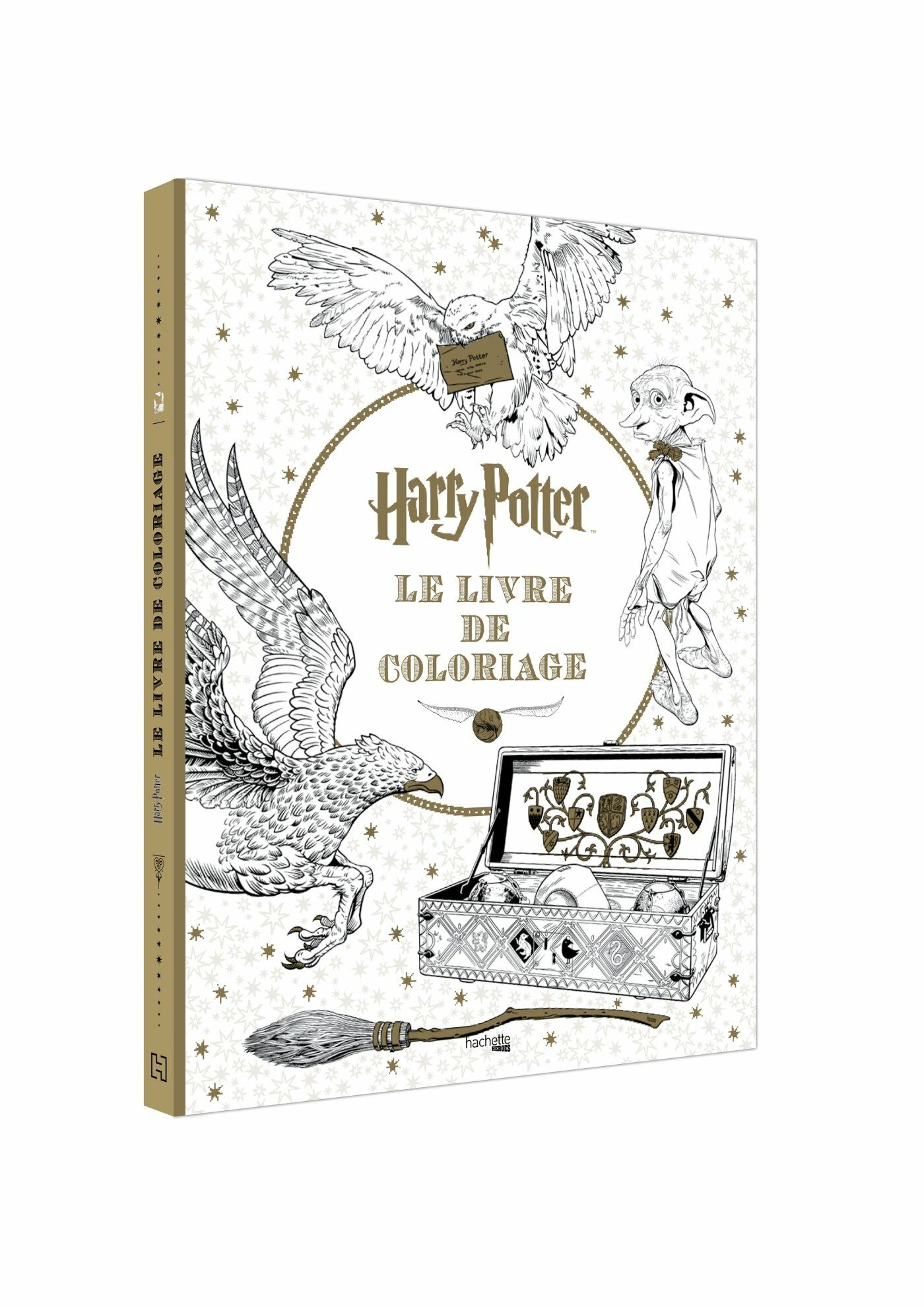 Harry Potter : une boutique vient d'ouvrir ses portes en France…