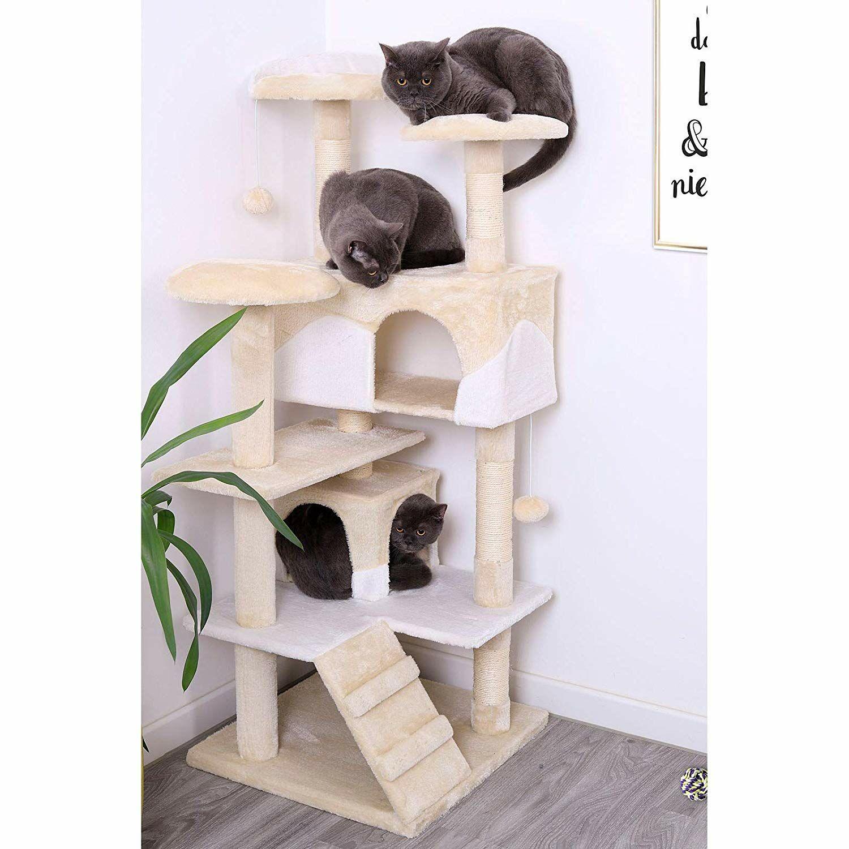 Pourquoi les chats adorent-ils autant se mettre dans des cartons ?…